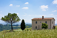 Casa Arbia - Buonconvento villas for rent