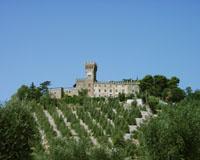 Castello di Magona - holiday villas in Campiglia Marittima